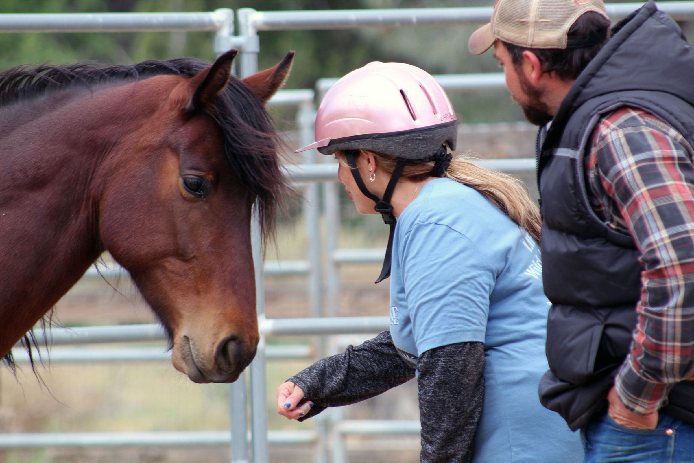 U.S Army Veteran • Provides Free Equine Therapy for fellow Vets in USA