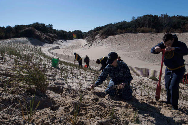 Sailors and Soldiers stationed at Joint Expeditionary Base Little Creek-Fort Story plant American beach grass at Omaha Beach located on Fort Story, Oct. 30, 2017. Planting the grass will help to stabilize and prevent erosion of the beach's dunes, which act as a protective barrier and provide the base with a valuable training area. (U.S. Navy Photo/Sonja Wickard)