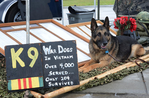 "Luke, a retired military working dog, sits at the United States War Dogs Association display at the 2016 Shaw Air Expo and open house, ""Thunder Over the Midlands,"" at Shaw Air Force Base, S.C., May 21, 2016. (U.S. Air Force/Zade Vadnais)"