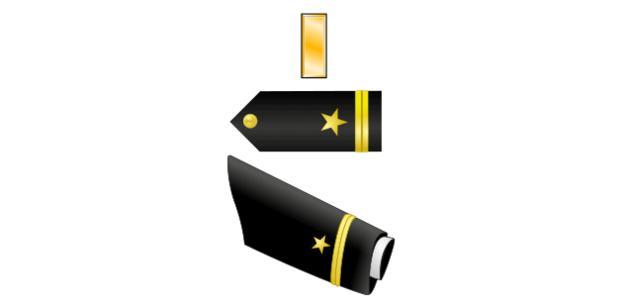 Ensign 01 insignia
