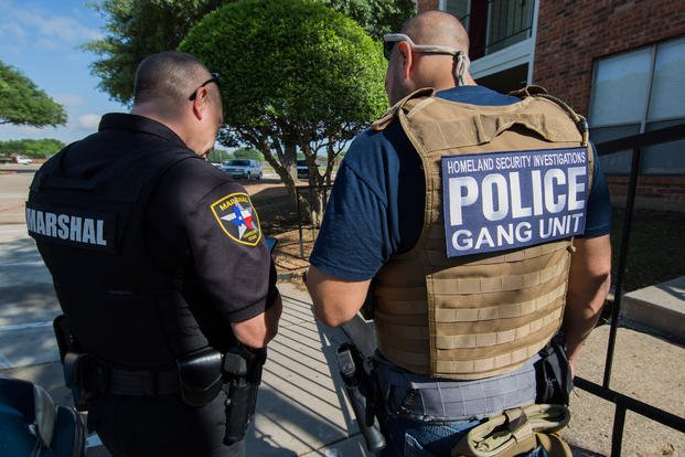 HSI raids known gang operations