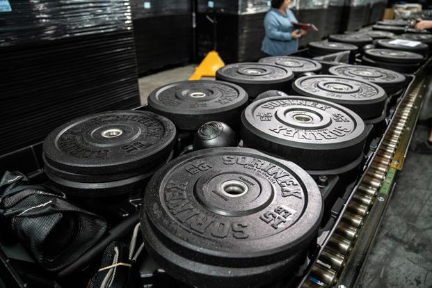 Sorinex bumper plates