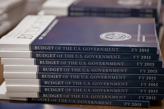 Government budget books for 2015.