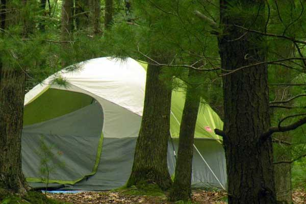 Tent in the woods
