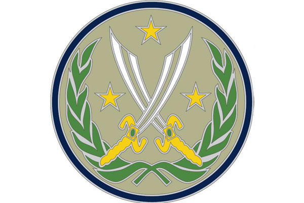 US Army's Combat Patch for ISIS Conflict Draws Flak over