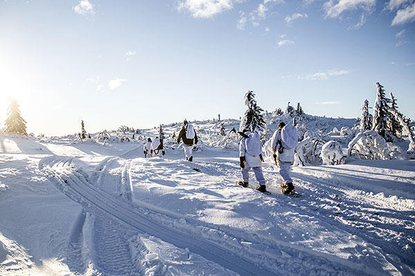 Allied soldiers cross-country ski under winter conditions with Norwegian equipment, Jan. 19, 2016. (Norwegian Army photo by Olav Standal Tangen)