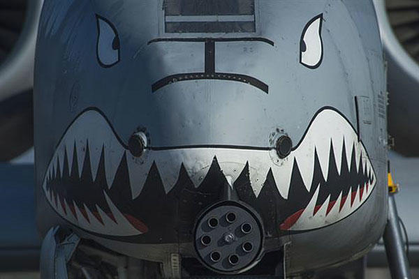 The nose of an A-10 Thunderbolt II displays a painted set of eyes and teeth over the aircraft's 30-mm GAU-8 Avenger rotary cannon during the 74th Expeditionary Fighter Squadron's deployment to Graf Ignatievo, Bulgaria, March 18, 2016. Air Force photo