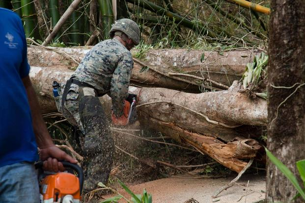 A U.S. Marine with the 26th Marine Expeditionary Unit (MEU), and a resident work to clear a tree blocking a main road as part of Hurricane Maria relief efforts in Ceiba, Puerto Rico, Sept. 27, 2017. (U.S. Marine Corps/Lance Cpl. Alexis C. Schneider)