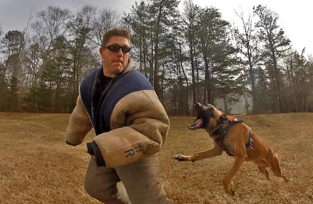 ERT canine handlers and dogs train in a variety of settings (photo courtesy of Stew).