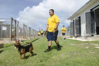 Sailors assigned to the submarine tender USS Frank Cable (AS 40), participate in a community relations event at Guam Animals in Need shelter in Yigo on Feb. 9, 2018. (U.S. Navy photo by Mass Communication Specialist 3rd Class Heather C. Wamsle)