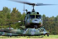 UH-1N Huey. (Air Force photo)