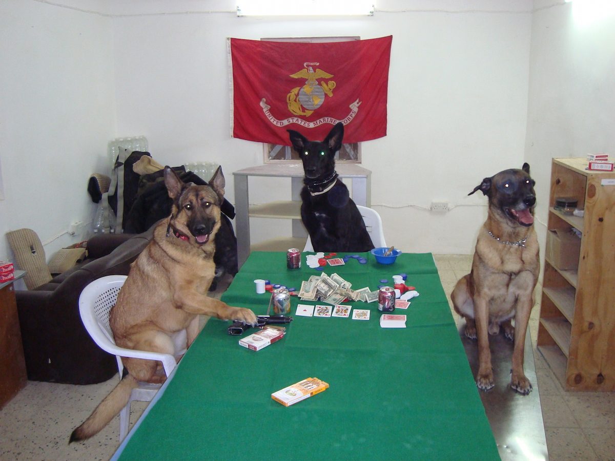 Soldier dog ebook best deal gallery free ebooks and more military top dog lucca gets her own book military fandeluxe gallery fandeluxe Image collections